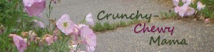 crunch-chewy-logo-001